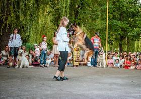 Фото 35 - Как черкасщане праздновали Ивана Купала?