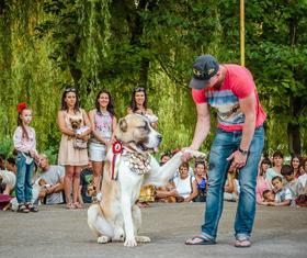 Фото 37 - Как черкасщане праздновали Ивана Купала?