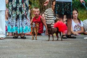 Фото 40 - Как черкасщане праздновали Ивана Купала?