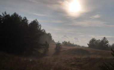 PEGAS - Природа вокруг нас - фото 2