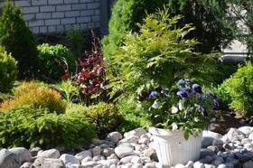 Фото 1 - Летний сад
