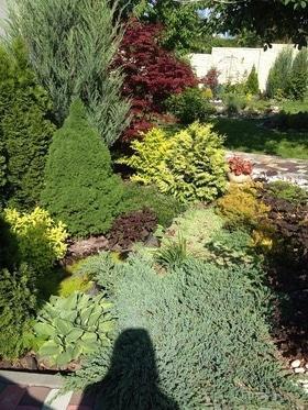 Фото 5 - Летний сад