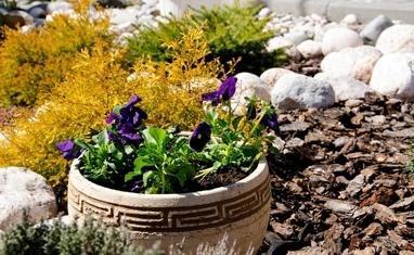Terrassa - Летний сад - фото 4