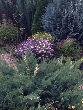 Фото 12 - Летний сад