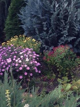 Фото 13 - Летний сад