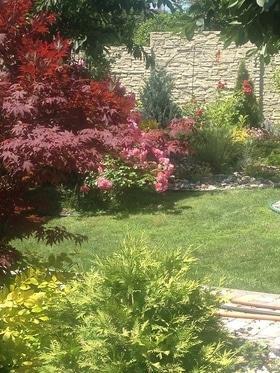 Фото 18 - Летний сад