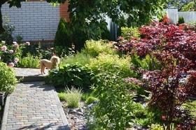 Фото 16 - Летний сад