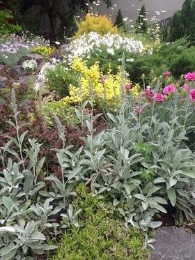 Фото 19 - Летний сад