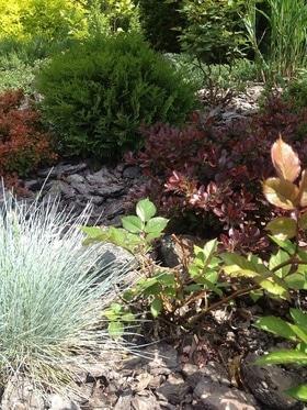 Фото 21 - Летний сад