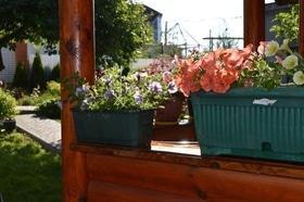 Фото 23 - Летний сад
