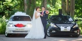 Фото 11 - Свадьба