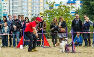 Чемпионат Черкасс по аджилити - фото 3