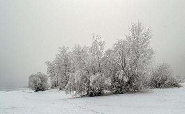 Снежная зима в Черкассах - фото 2