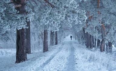 Снежная зима в Черкассах - фото 3