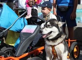 Фото 11 - Парад детских колясок 'Baby boom' 2017