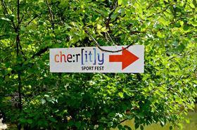 Фото 48 - Спортивно-благотворительный фестиваль 'CherITy 2017'