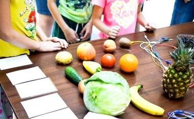 Студия Экспериментов 4D - Поющие овощи - фото 1