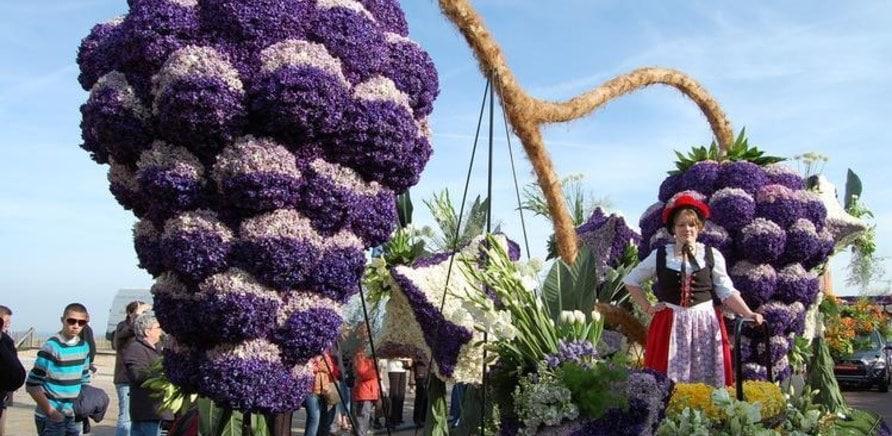 Куда поехать на майские праздники: лучшие фестивали мира