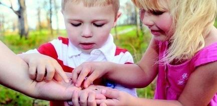 'Літо' - стаття День захисту дітей у Черкасах: добірка цікавих заходів