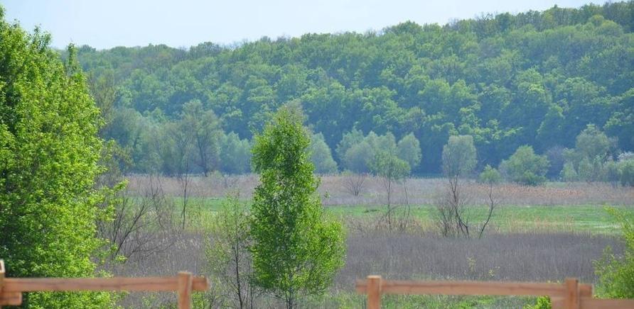 Фото 3 - Отдых проходит на лоне живописной природы