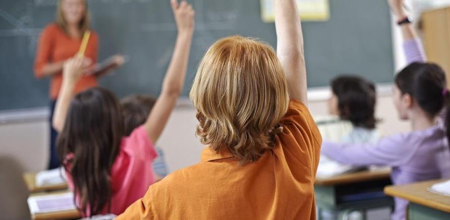 'Альтернативное решение: частные школы и детские сады'