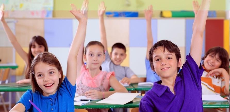 Альтернативное решение: частные школы и детские сады