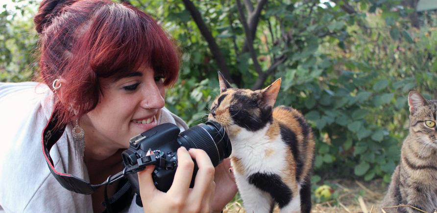 Фото 5 - Я тут працюю: притулок для котів