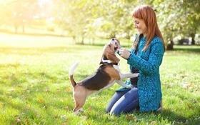 Стаття 'Корисні контакти для власників домашніх тварин'