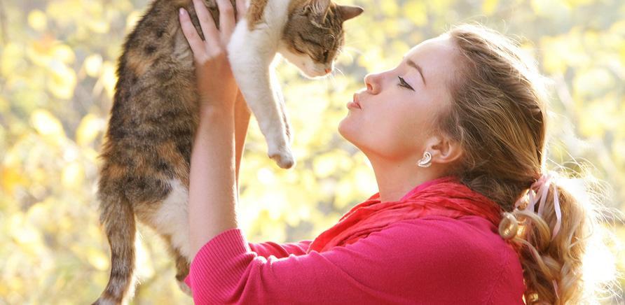 Полезные контакты для владельцев домашних животных