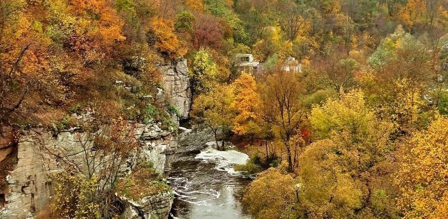 Фото 2 - Осень в Буках (фото – http://1ua.com.ua/nf7144633)