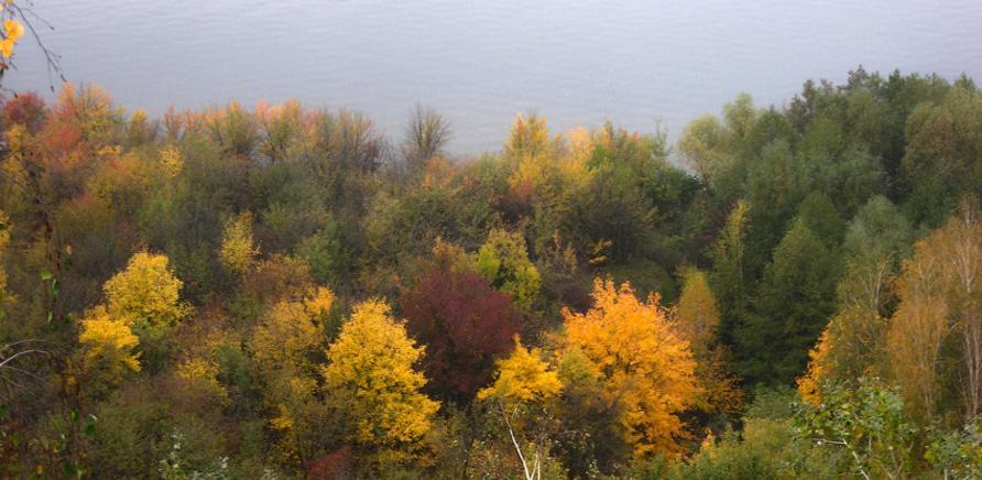 Фото 2 - Трахтемировский полуостров (фото – http://mandrivnic.livejournal.com/)