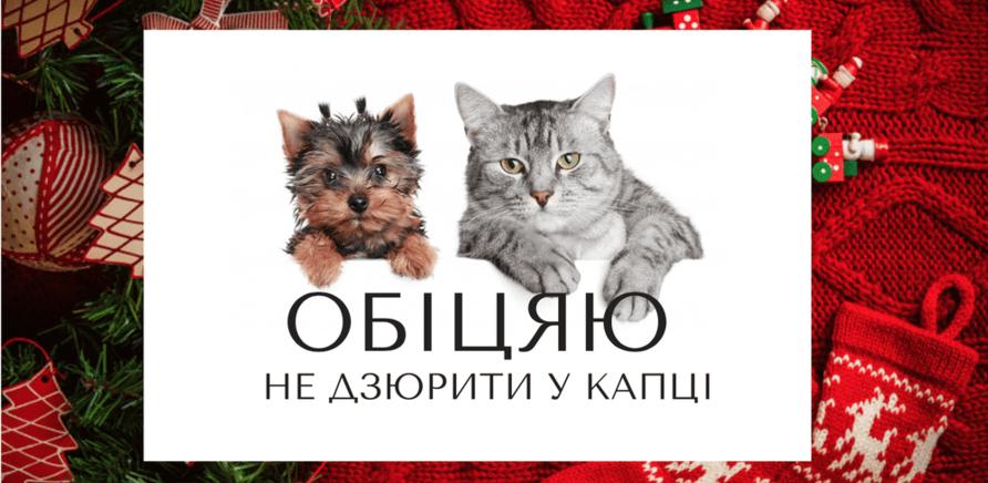 Novogodnie obeshchaniya.12