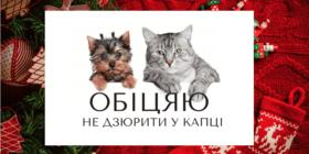 Статья 'Новогодние обещания'