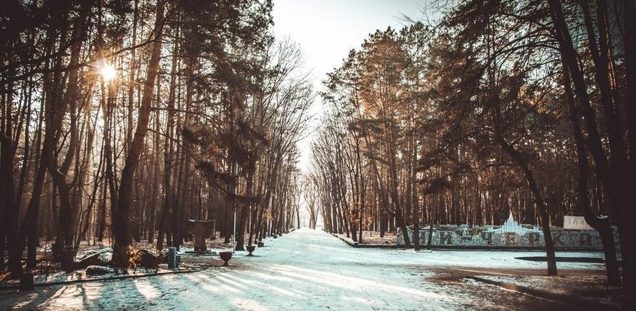 Фото – Валерій Січкар