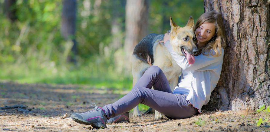 Мнение ветеринара: как защитить собаку от блох и клещей весной?