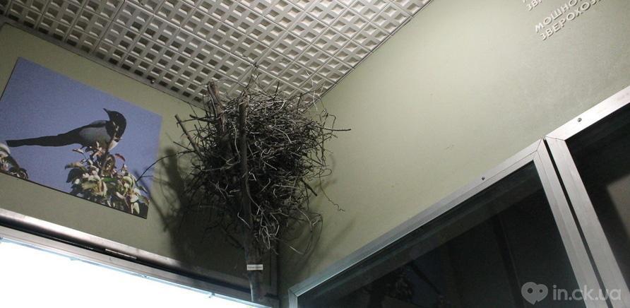 Металеве гніздо
