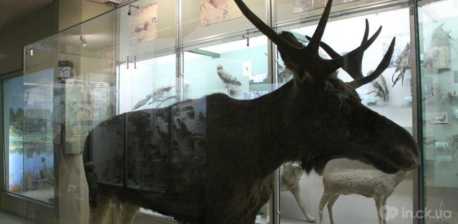 Фото 2 - 10 причин відвідати наш Краєзнавчий музей