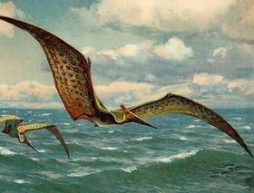 Статья 'Какой была Черкасщина во времена динозавров и мамонтов?'