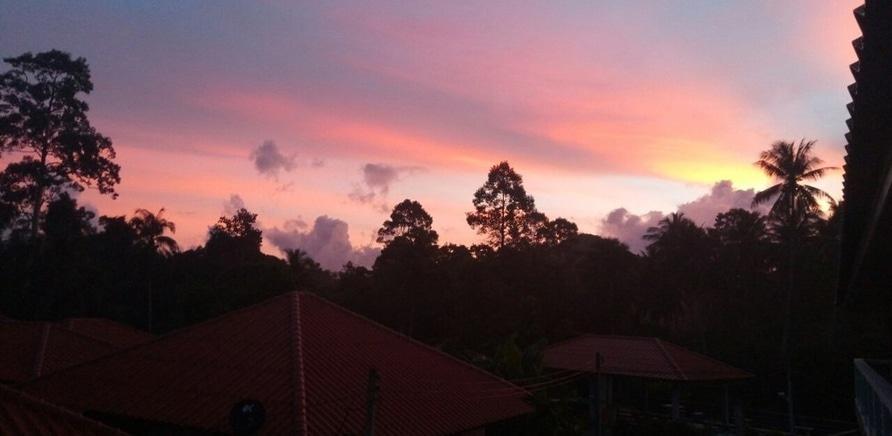 Фото 2 - Захід сонця над джунглями