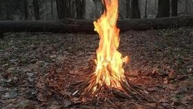 Статья 'За сжигание мусора черкасщане будут платить штрафы'