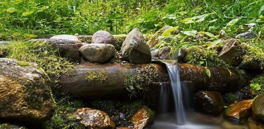 'Кристально чистая: где найти источники воды в Черкасской области?'