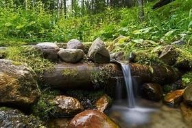 Статья 'Кристально чистая: где найти источники воды в Черкасской области?'