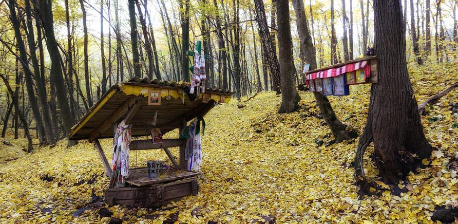 Фото – http://zamkovyi.livejournal.com/68221.html