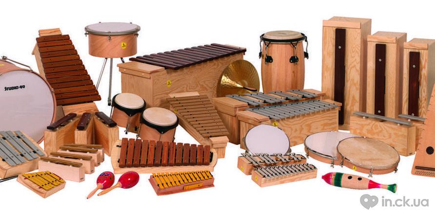 Фото 4 - В Черкассах собирают деньги на музыкальную студию для детей от одного года