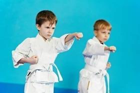 Стаття 'В які безкоштовні спортивні секції віддати дитину в Черкасах?'