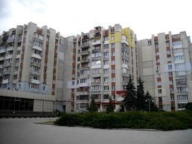 Стаття 'І в хаосі є свій шарм: як мозаїки і мурали змінюють вигляд черкаських будинків'