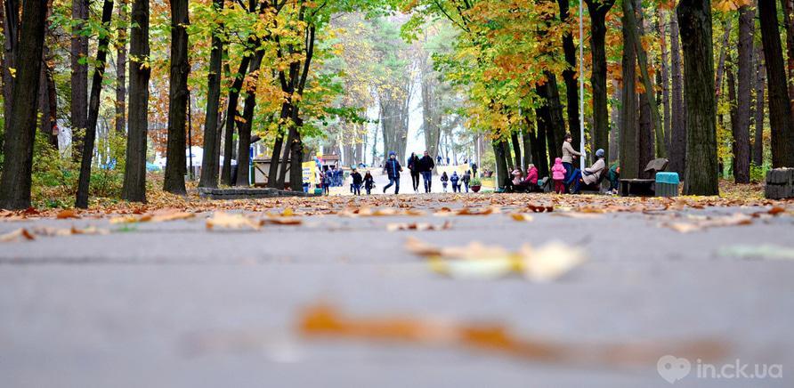 """Фото 2 - Парк """"Сосновий бір"""""""