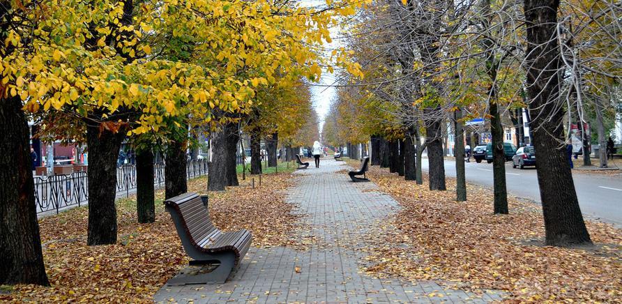 Фото 1 - Бульвар Шевченка