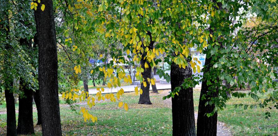 Фото 5 - Соборний парк