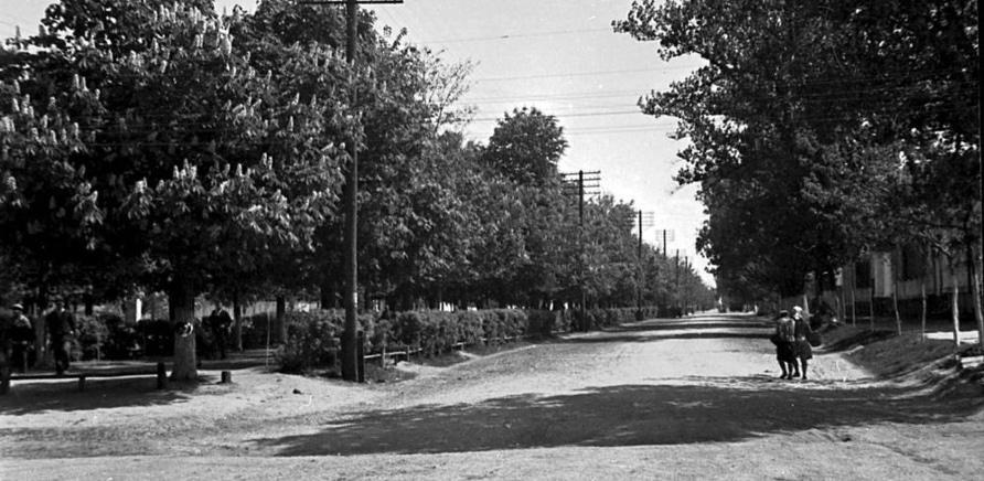 Фото 1 - Бульвар Шевченко в 1947 году